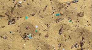 microplasticos del mar a tu plato